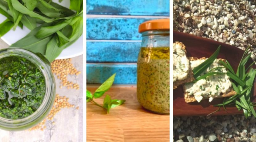 """New recipes with edible """"weeds"""". These spring herbs will jazz up your kitchen and your cooking"""