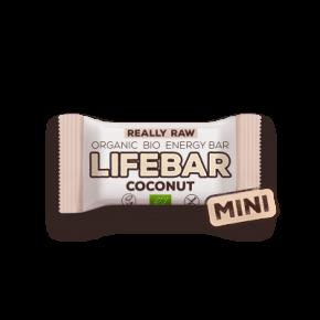 Raw Organic MINI Lifebar Coconut